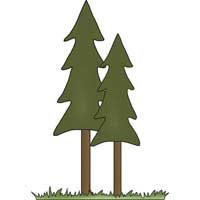 Camping Freebies Picture Helpers - Tall Trees