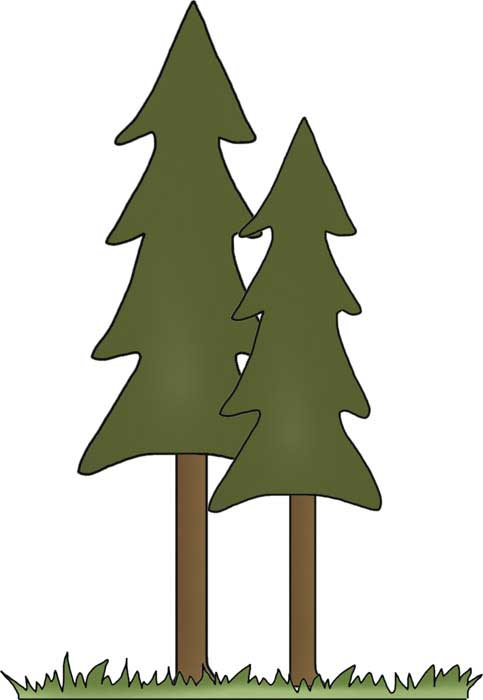 Tall Trees Clip Art Campingfreebies Com