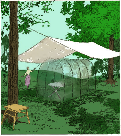 mosquito shelter